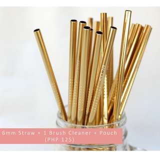 Reusable Stainless Straw (Gold)