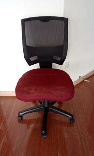 Oasis Ergonomic Office Chair