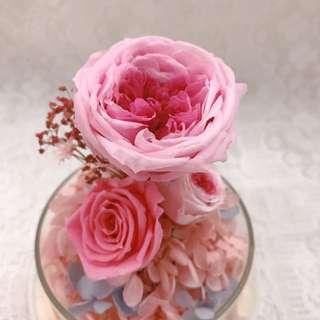 永生花玻璃瓶擺設 保鮮花擺設
