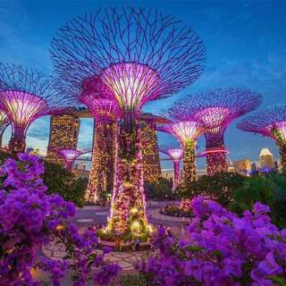 Good price Garden by the bay
