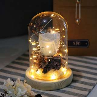 White Rose Bell Jar with Fairy Lights
