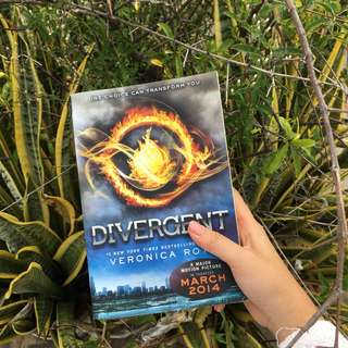 Imported Novel Divergent by Veronica Roth