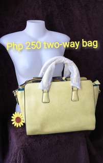Two way bag