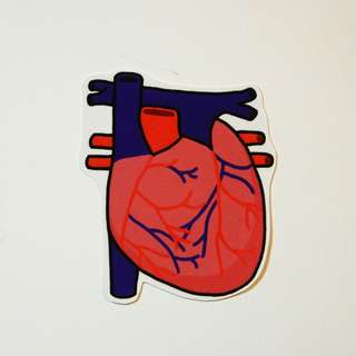 心臟貼紙 Heart Sticker Biology