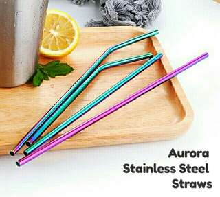Eco-warrior Metal Straw