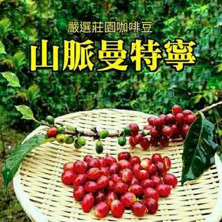 🚚 山脈曼特寧(半磅裝咖啡豆)