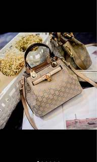 Gucci Style Hand Bag/Sling Bag