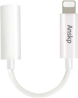 Lightning to Aux Cable