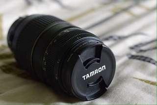 Tamron AF 70-300mm Lens