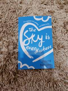 FREE ONGKIR The Sky is Everywhere