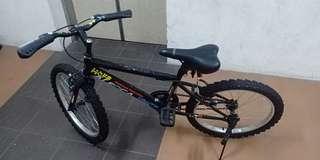 Kid mountain bike