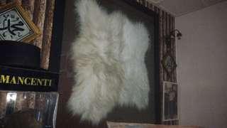 Bulu binatang antik siap frame (Saiz besar)