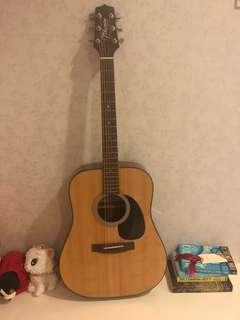 Shine coated acoustic guitar TAKAMINE