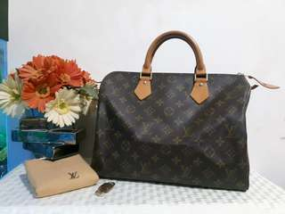 Authentic Speedy 30 Monogram