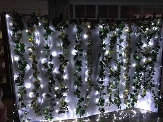 [RENT] White Curtain Fairy Lights
