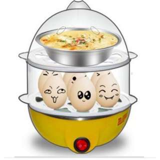 Multi-Function 2-Layer Electric Food and Egg Cooker