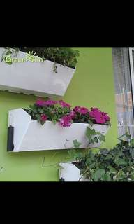 Wall hanging 4 flower pot with water storage