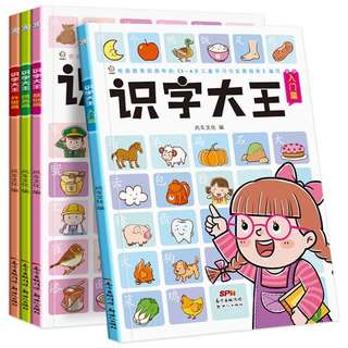 Set of 4pcs Kids Learn Chinese Words Books