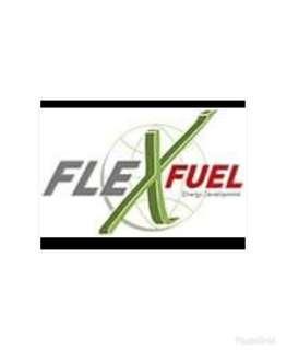 法國 Fle X fuel 汽車除碳