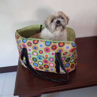 Cute Dog Carrier/Bag (Dog not included. HAHA.)