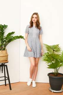 TSW Claudia lace skater dress in grey