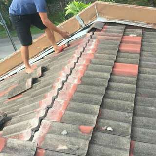 Atap Bocor Service