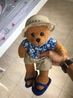 Hawaii Bear