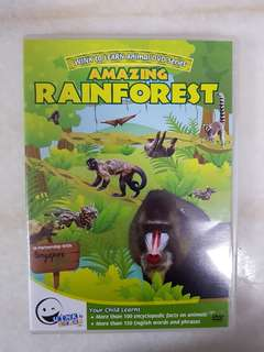 Wink to Learn Animal DVD Series - Amazing Rainforest
