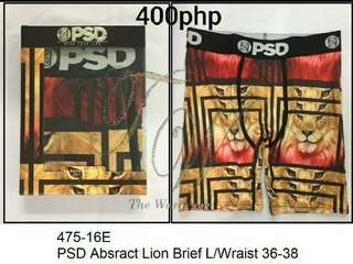 PSD Abstract Lion Brief