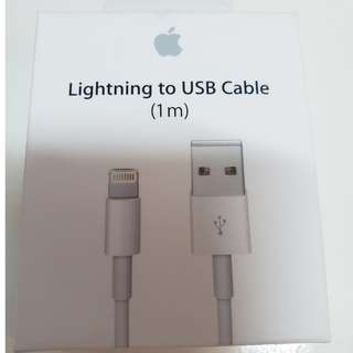 Apple Lightning Cable 原裝 Ipad Iphone 充電線 1m (行貨 有單有保)