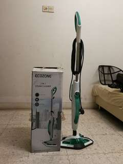 Ecozone 2 in 1 Steam Cleaner