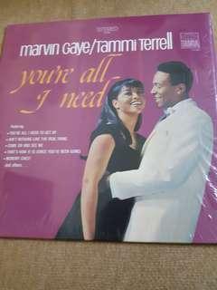 Vinyl Marvin Gaye / tammi terrell