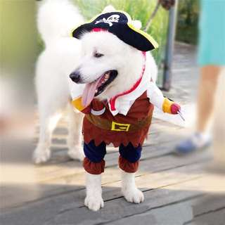 Baju Anjing dan Kucing karakter Bajak Laut