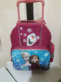 Frozen trolley bag