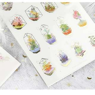 PVC Transparent Stickers - Gold Foiled Terrariums