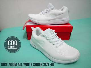 Nike Zoom All White Shoes
