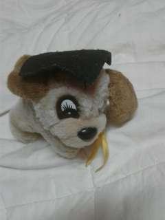 Grad Dog stuffed toy