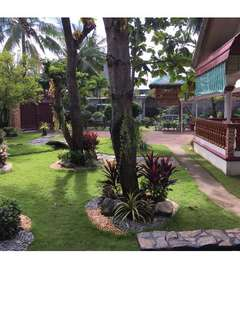 Rush House and Lot for Sale (800 sq m lot)