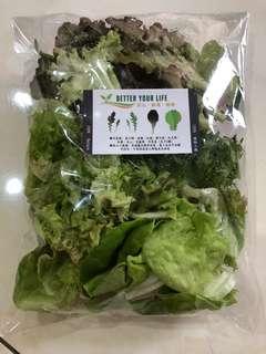 繽紛鮮蔬包 一次吃到多種類 沙拉懶人包 200g/包