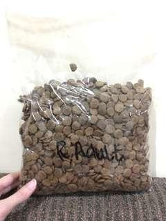 Regal Adult Dog Food (makanan anjing dewasa)
