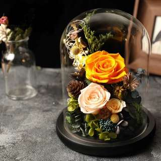Preseved flowers roses in glass