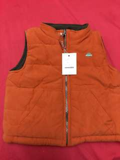 This is a fleece reversible vest