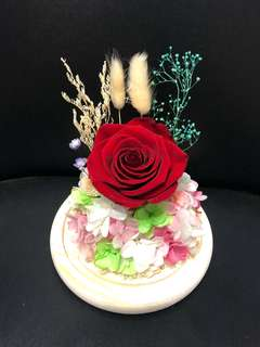 🈹⭐️ 永生花 玻璃罩 真花 保鮮花 永不凋謝花 送禮 父親節禮物 520 玫瑰