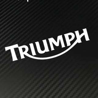 Triumph sticker mouse helmet coverset fairings box waterproof