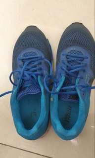 Nike Pegasus blue