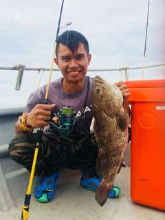 Baby grouper