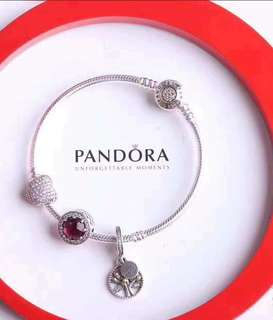 Authentic Pandora Set