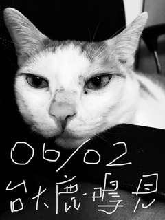 06/02 衣櫥大總清