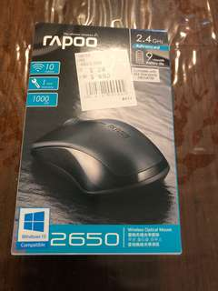 Rapoo Wireless Optical Mouse