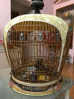 New Merbok Cage - Sale or Trade